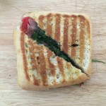 Toasted Parma Ham and Fontina Cheese Paninis